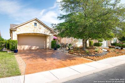 San Antonio Single Family Home New: 12607 Green Darner