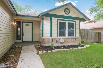 San Antonio Single Family Home New: 9346 Autumn Sun