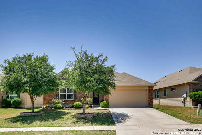 Cibolo Single Family Home New: 521 Portrush Ln
