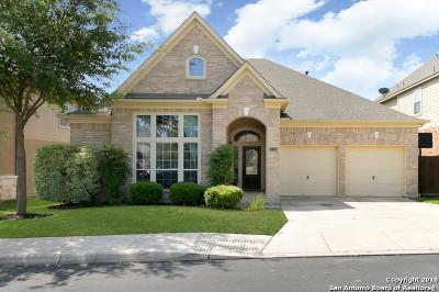 San Antonio Single Family Home New: 27234 Trinity Bend