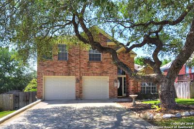 San Antonio Single Family Home New: 24511 Arrow Canyon