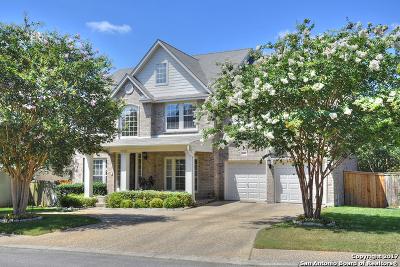San Antonio Single Family Home New: 19507 Camino Ridge