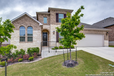 San Antonio TX Single Family Home New: $515,000