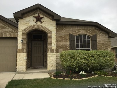 New Braunfels Single Family Home New: 5620 Meadow View