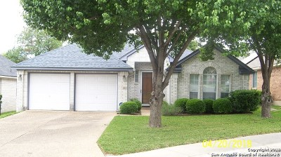 San Antonio TX Single Family Home New: $224,500