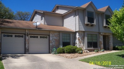 San Antonio TX Single Family Home New: $294,500