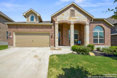 San Antonio TX Single Family Home New: $323,900