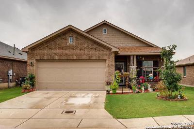 Converse Single Family Home New: 8914 Audubon Park