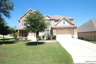 San Antonio Single Family Home New: 5426 Dragon Weed