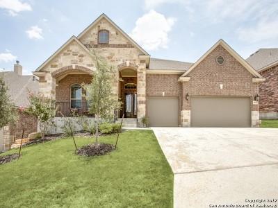 Boerne TX Single Family Home New: $430,000