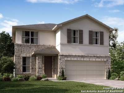 San Antonio Single Family Home New: 8114 Cactus Bend