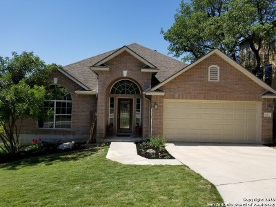 Stone Oak Single Family Home For Sale: 7 Bryce Canyon