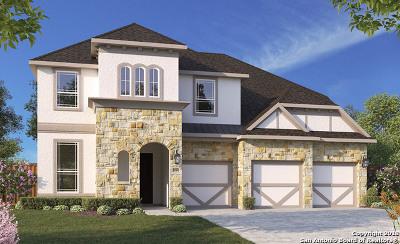 Single Family Home For Sale: 141 Destiny
