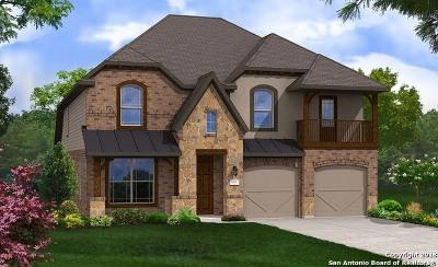 Bexar County Single Family Home New: 27906 Lokaya Falls