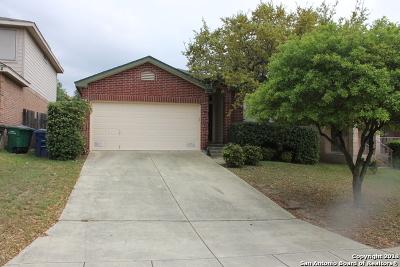 San Antonio Single Family Home New: 1310 Bobcat Pass