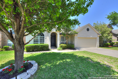 San Antonio Single Family Home New: 19531 Crystal Oak
