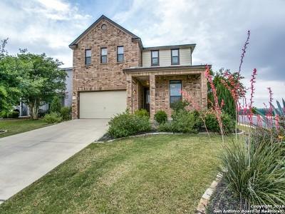 San Antonio Single Family Home New: 7735 Sundew Mist