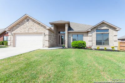 New Braunfels Single Family Home New: 2264 Garden Sun Pl
