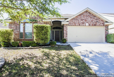 New Braunfels Single Family Home New: 224 Rock Springs Dr
