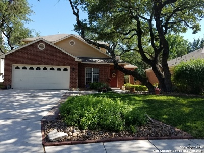 San Antonio TX Single Family Home New: $221,500