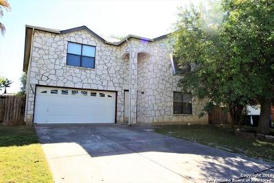 San Antonio TX Single Family Home New: $214,990