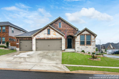 New Braunfels Single Family Home New: 908 Hickory Hollow
