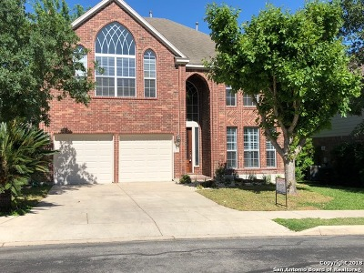 San Antonio TX Single Family Home New: $439,900