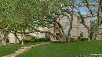San Antonio Single Family Home New: 17122 Fawn Brook Dr