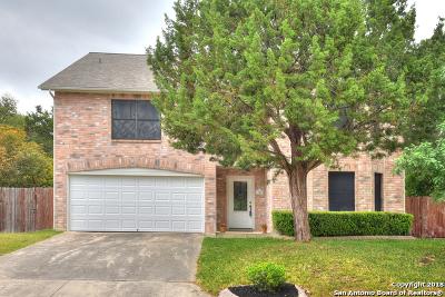 San Antonio Single Family Home New: 11012 Oaktree Park