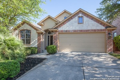 Cibolo Canyons Single Family Home For Sale: 3339 Highline Trail
