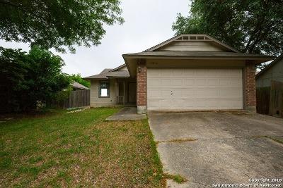 San Antonio Single Family Home New: 12010 Stoney Smt