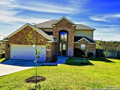 San Antonio Single Family Home New: 19403 Desert Oak