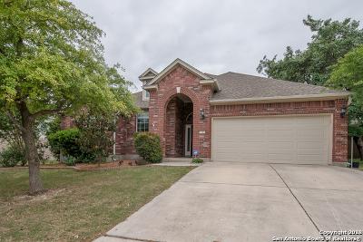 San Antonio Single Family Home New: 4319 Amos Pollard