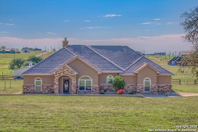 Wilson County Single Family Home New: 131 Scenic Hills Dr