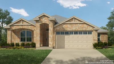 New Braunfels Single Family Home New: 3005 Sandstone Way