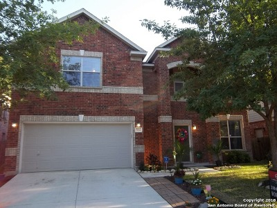 San Antonio TX Single Family Home New: $304,900