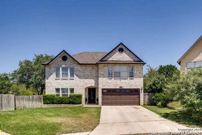 San Antonio TX Single Family Home New: $388,000