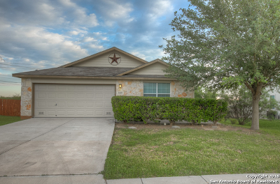 New Braunfels Single Family Home New: 3549 Tilden Trail