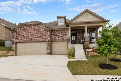 San Antonio TX Single Family Home New: $282,000