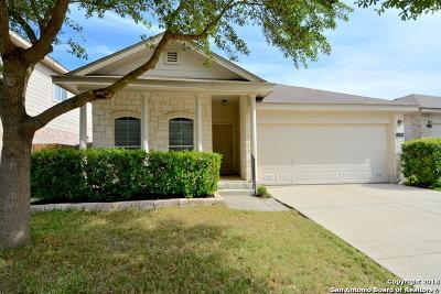 San Antonio TX Single Family Home New: $172,000