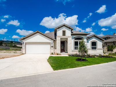 Hidden Canyon, Hidden Canyon - Bexar County Single Family Home For Sale: 21807 Rugged Hills