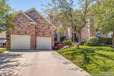 San Antonio TX Single Family Home Active RFR: $419,000