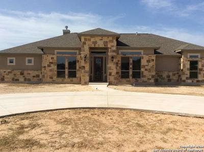 Pleasanton Single Family Home For Sale: 1720 Camden Ln
