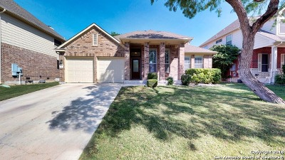 Guadalupe County Single Family Home New: 991 Oak Park