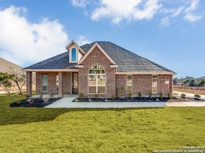 Medina County Single Family Home For Sale: 159 Cascade Trail