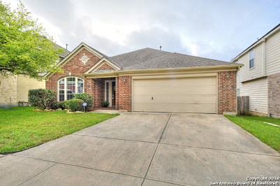 San Antonio Single Family Home New: 27114 Spiral Canyon