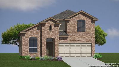 San Antonio Single Family Home New: 5814 Calaveras Way