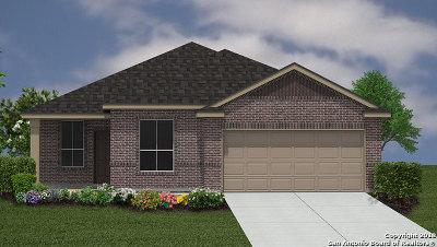 Bexar County, Medina County Single Family Home Back on Market: 8939 Palomino Pony