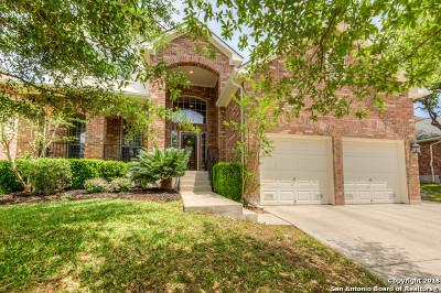 San Antonio TX Single Family Home New: $411,900