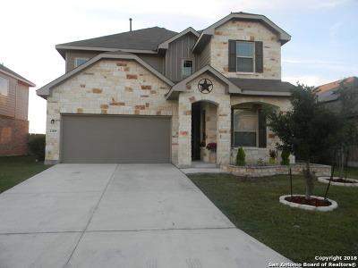 San Antonio Single Family Home New: 13809 Cohan Way
